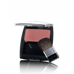 Isadora Perfect Powder Blusher Frosty Rose 20